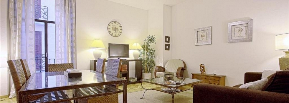 Luxury Apartment in Madrid